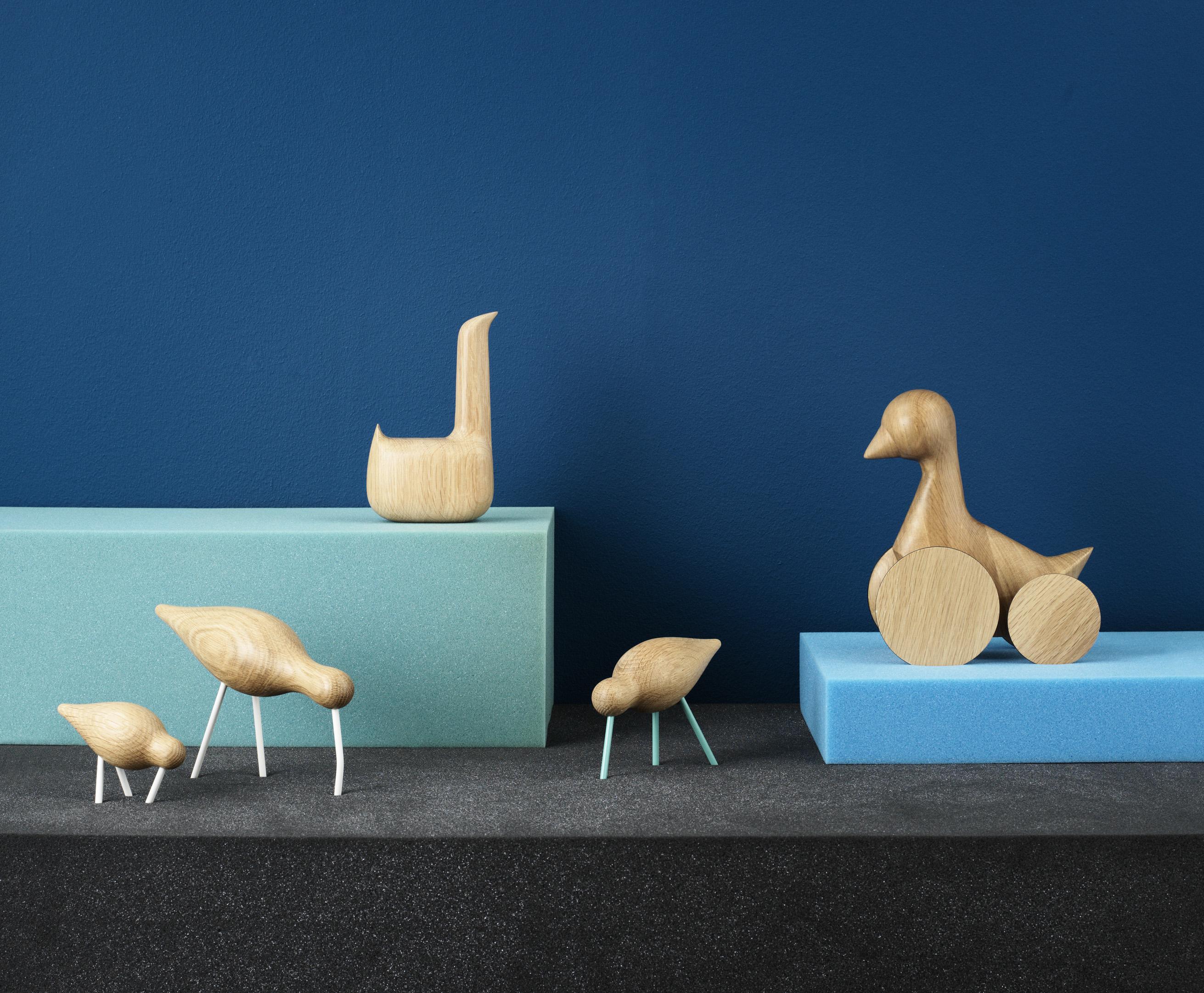 1001_Shorebird_Swan_Ducky_1