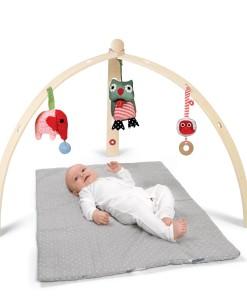 BabySpyder wooden gym