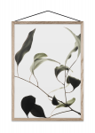 Plakat A3 FLOATING LEAVES 09
